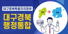 대구경북특별자치정부 대구경북행정통합
